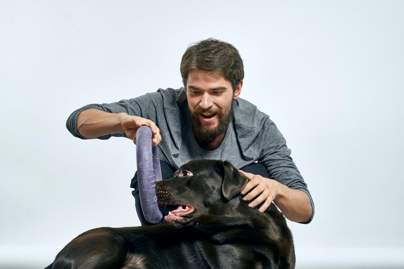 Juegos, rutinas y actividades para compartir con tu perro en casa