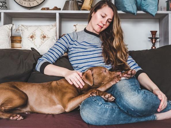 Afectaciones psicológicas de la cuarentena en nuestras mascotas ...