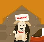 Waggo Contact