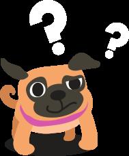 FAQ Dog