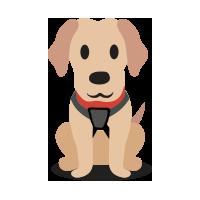 Valet Canino