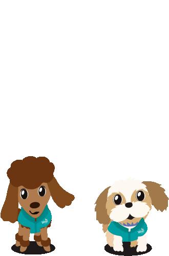 Co-terapeutas caninos