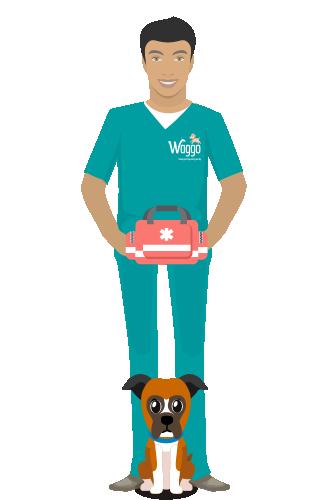 Auxiliares veterinarios